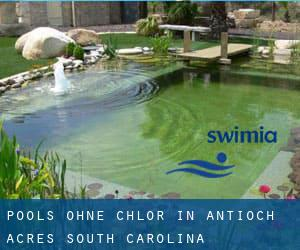 Pools-ohne-chlor in Antioch Acres (South Carolina)
