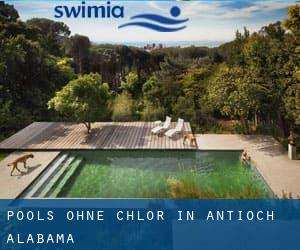 Pools-ohne-chlor in Antioch (Alabama)