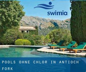 Pools-ohne-chlor in Antioch Fork
