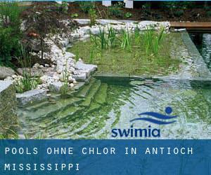 Pools-ohne-chlor in Antioch (Mississippi)