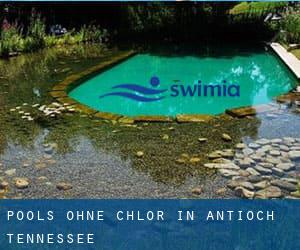 Pools-ohne-chlor in Antioch (Tennessee)