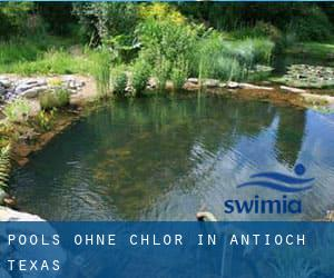 Pools-ohne-chlor in Antioch (Texas)