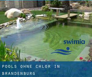 Pools-ohne-chlor in Brandenburg