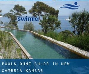 Pools-ohne-chlor in New Cambria (Kansas)