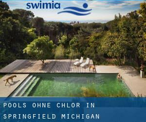 Pools-ohne-chlor in Springfield (Michigan)