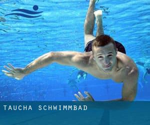 Freibad Taucha taucha schwimmbad leipzig region saxony deutschland
